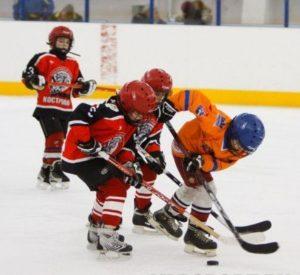 Открытый турнир по хоккею с шайбой