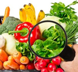 «Горячая» линия по вопросам качества и безопасности плодоовощной продукции и срокам годности